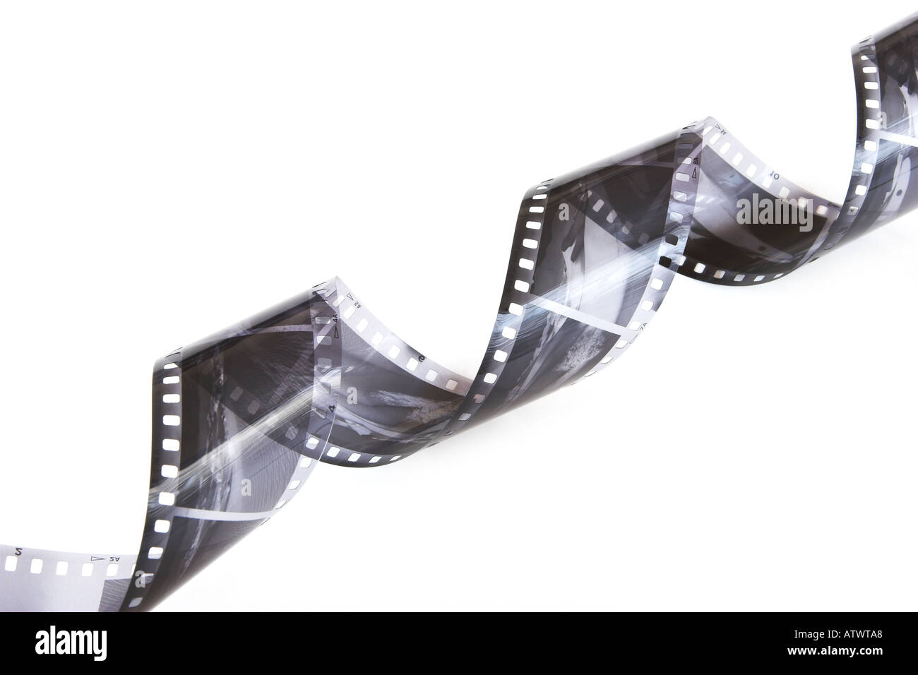 Curled black and white negatives - Stock Image