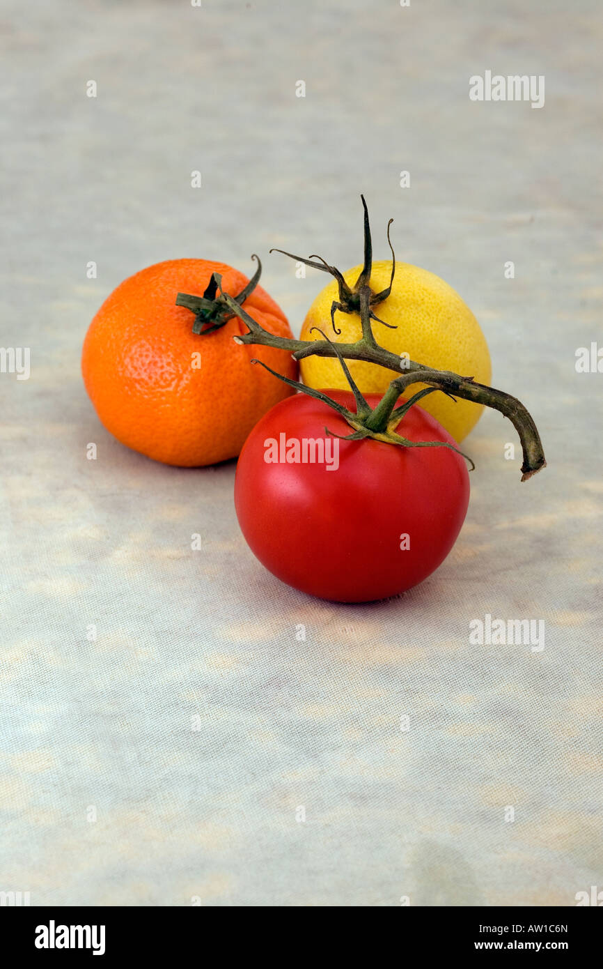 a red tomato, yellow lemon and a orange manderin fruit are connected on a vine. They are on a blue green grey background - Stock Image