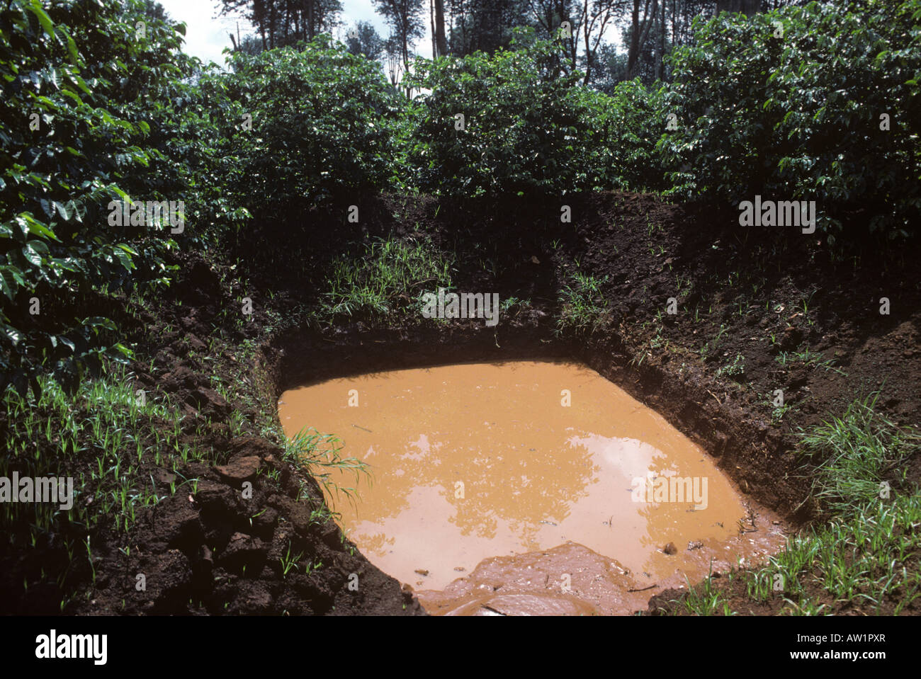 Water Catchment Stock Photos Amp Water Catchment Stock