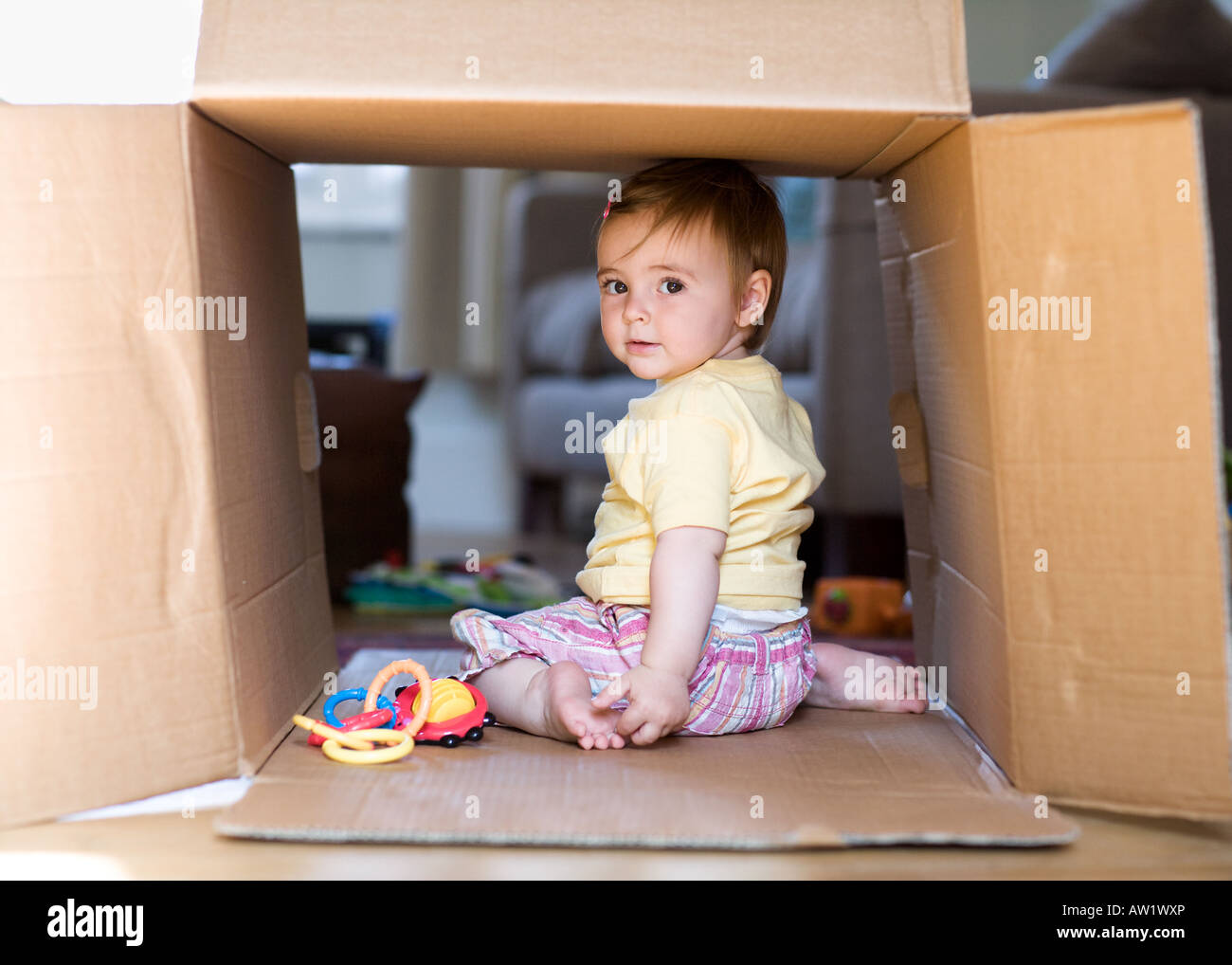 11 month old baby girl playing in a cardboard box - Stock Image
