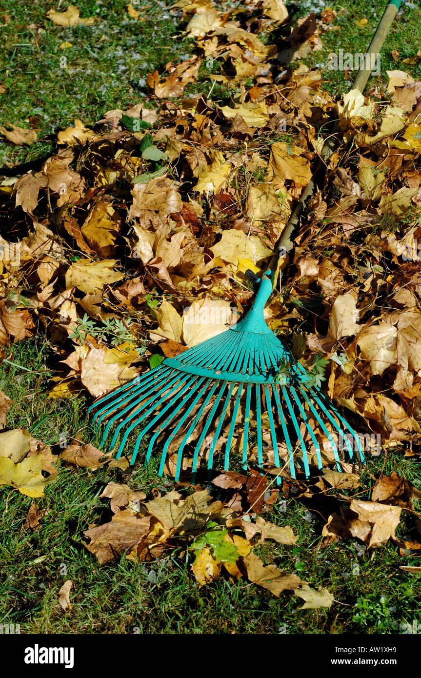 Herbst stock photos herbst stock images alamy - Gartenarbeit im herbst ...
