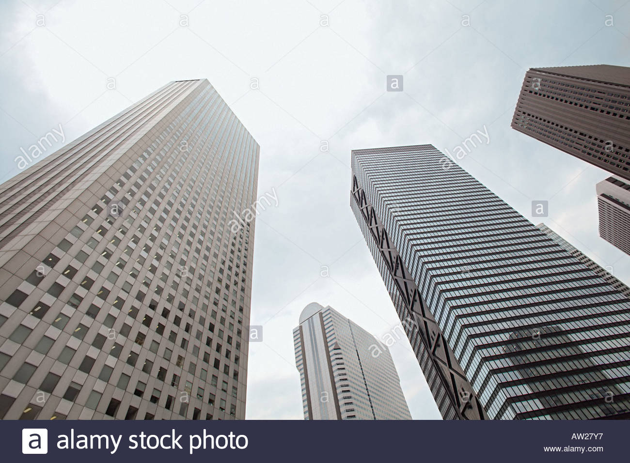 Skyscrapers - Stock Image