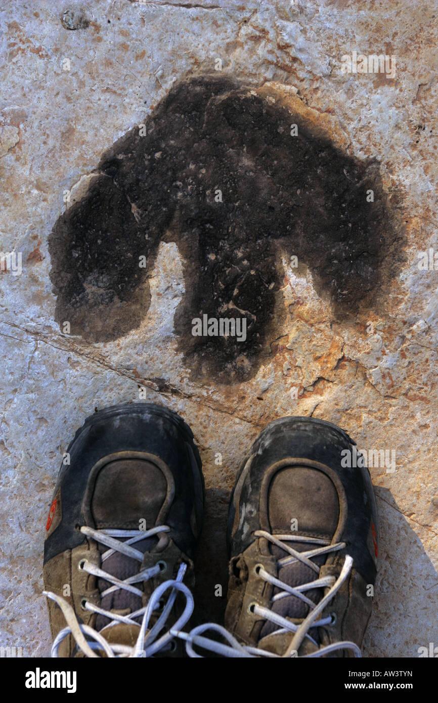 Dinosaur footprint at Tambuc, Spain. - Stock Image