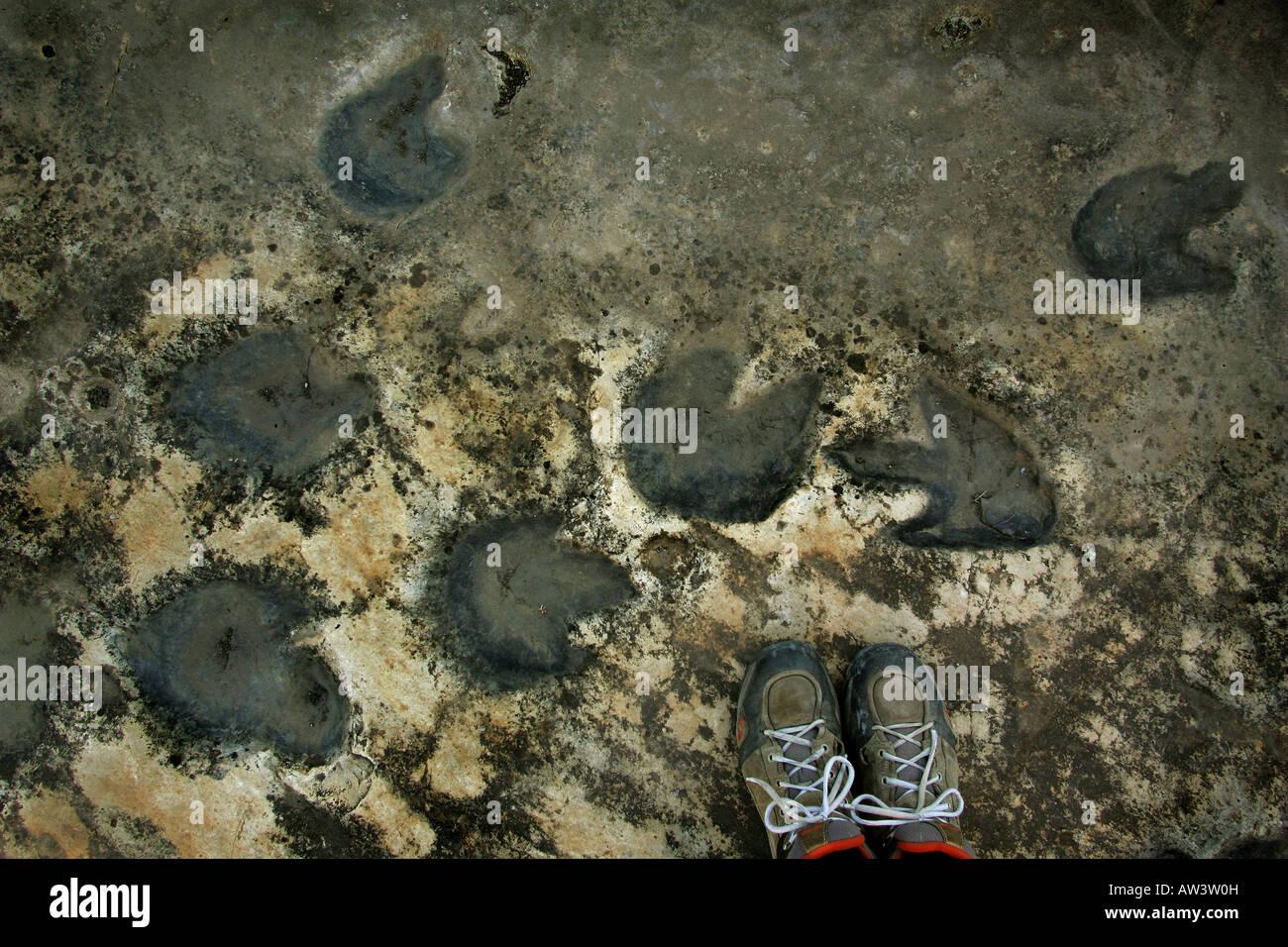 Dinosaur footprints at Tambuc, Spain. - Stock Image