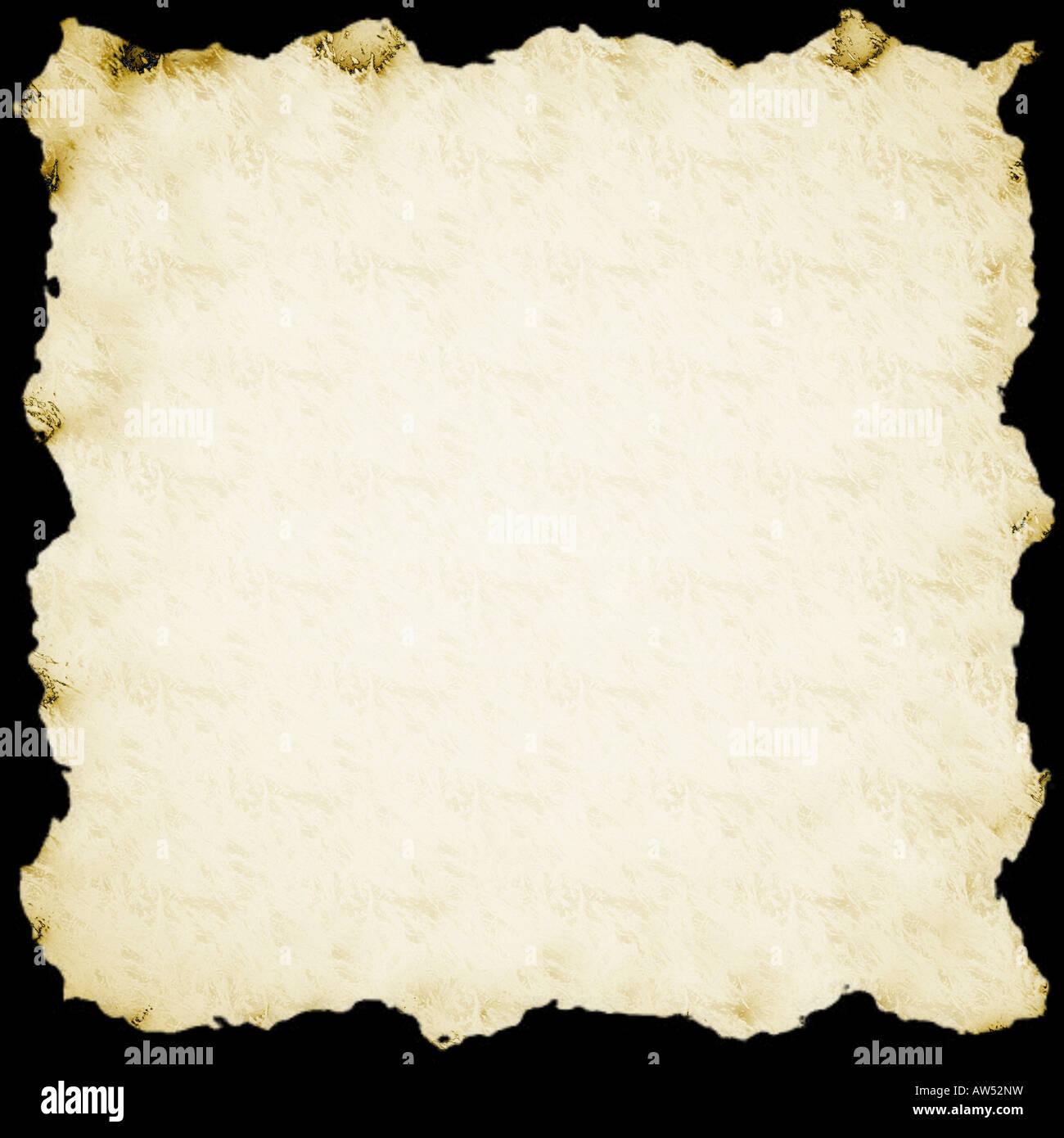 Papyrus - Stock Image