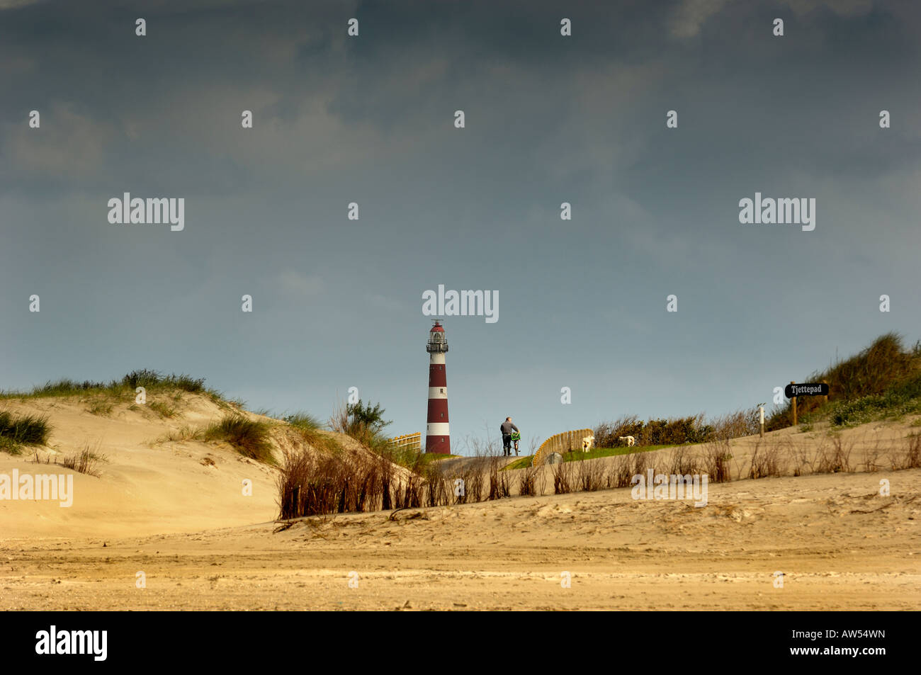 Landscape with lighthouse from island Ameland 2007 beachcomber with bicycle on dunes Stock Photo