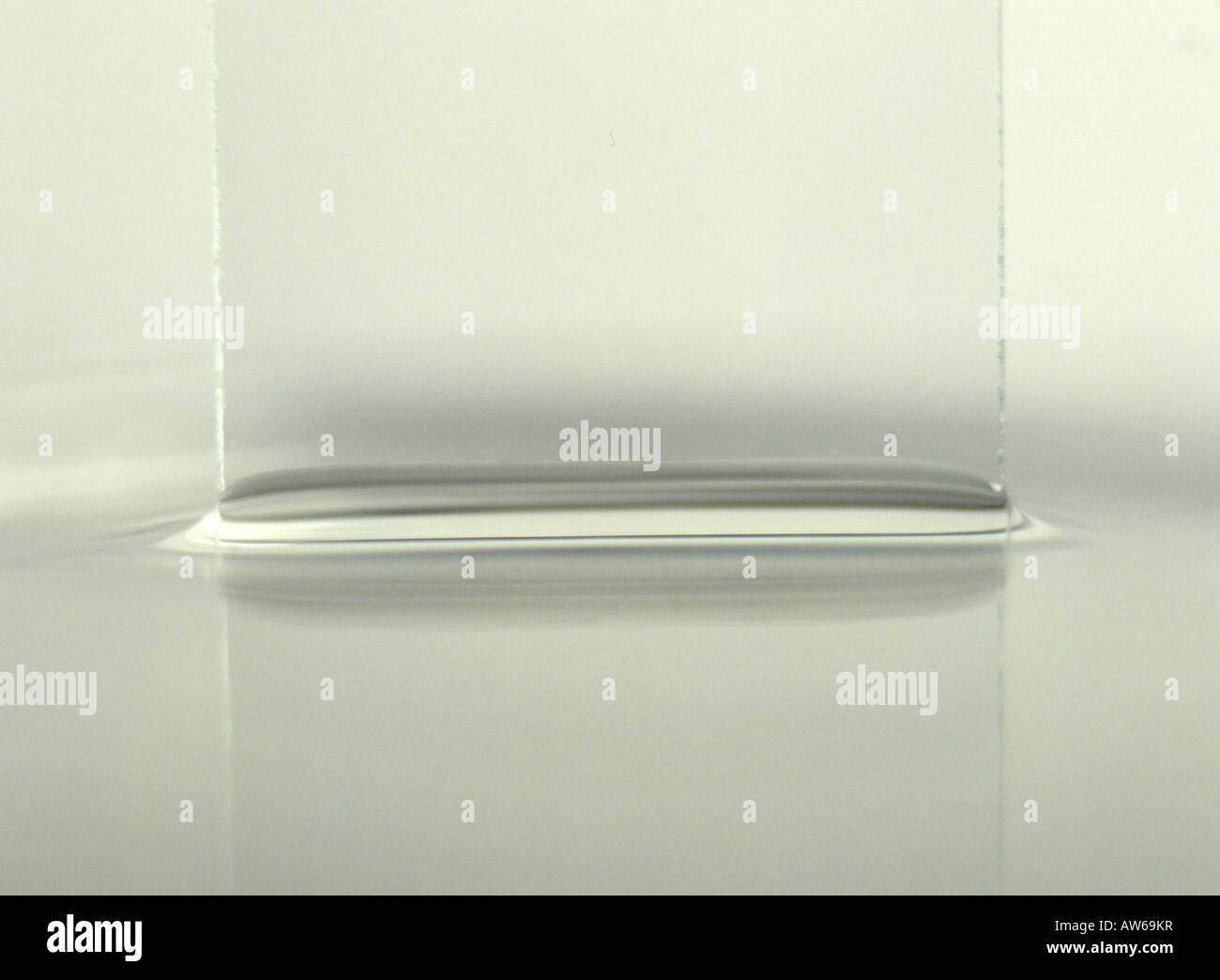 capillary rise of water against a glass slide - Stock Image