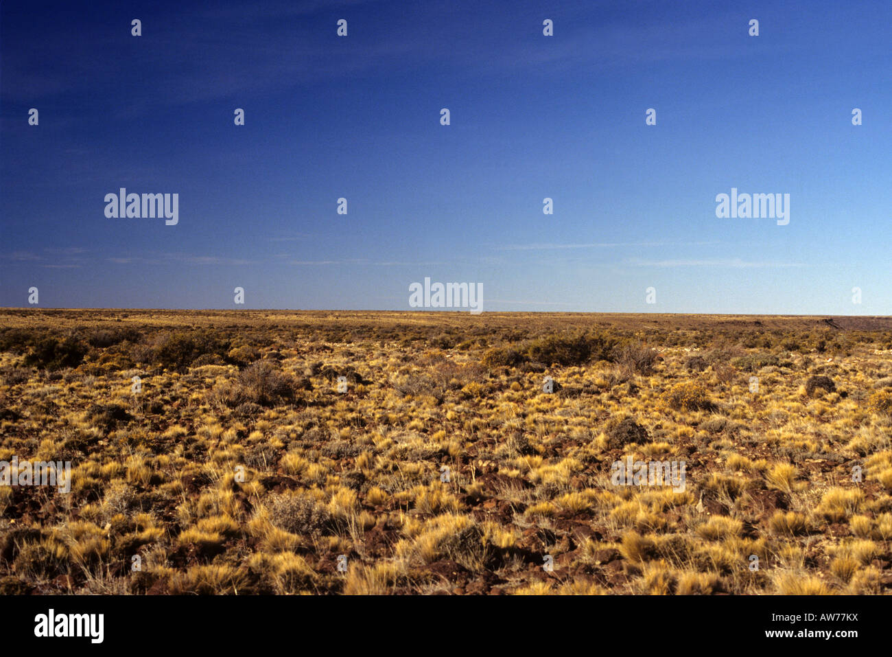 A view of the patagonic steppe in the Somuncura Plateau - Stock Image