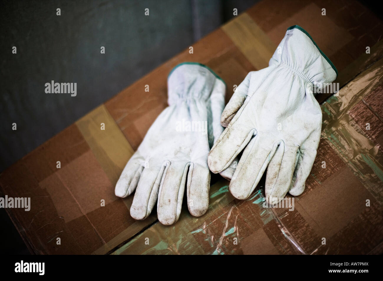 Old leather gardening gloves - Stock Image