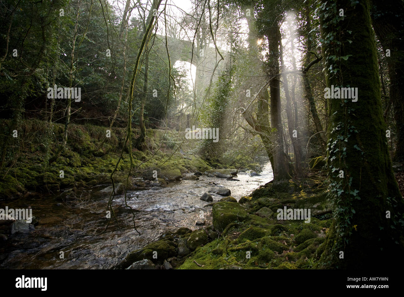 The river Erme at Ivybridge with the railway viaduct in the distance. - Stock Image