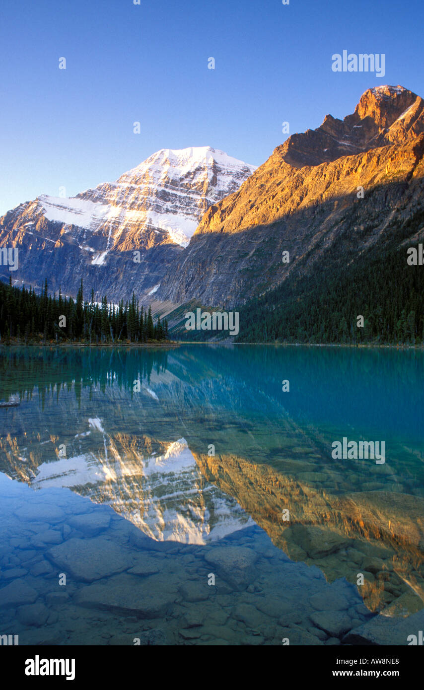 Dawn light on Mount Edith Cavell reflected in Cavell Lake Jasper National Park Alberta Canada - Stock Image