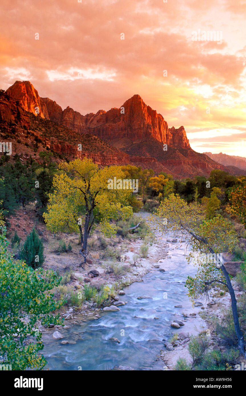 Evening light on Watchman Peak above the Virgin River Zion Canyon Zion National Park Utah - Stock Image