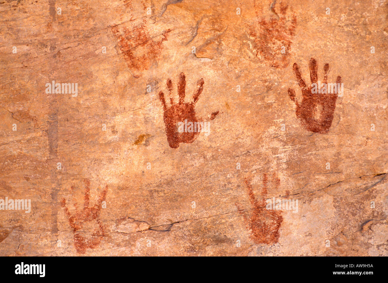Anasazi hand prints at Turkey Pen Ruin Grand Gulch Primitive Area Utah - Stock Image