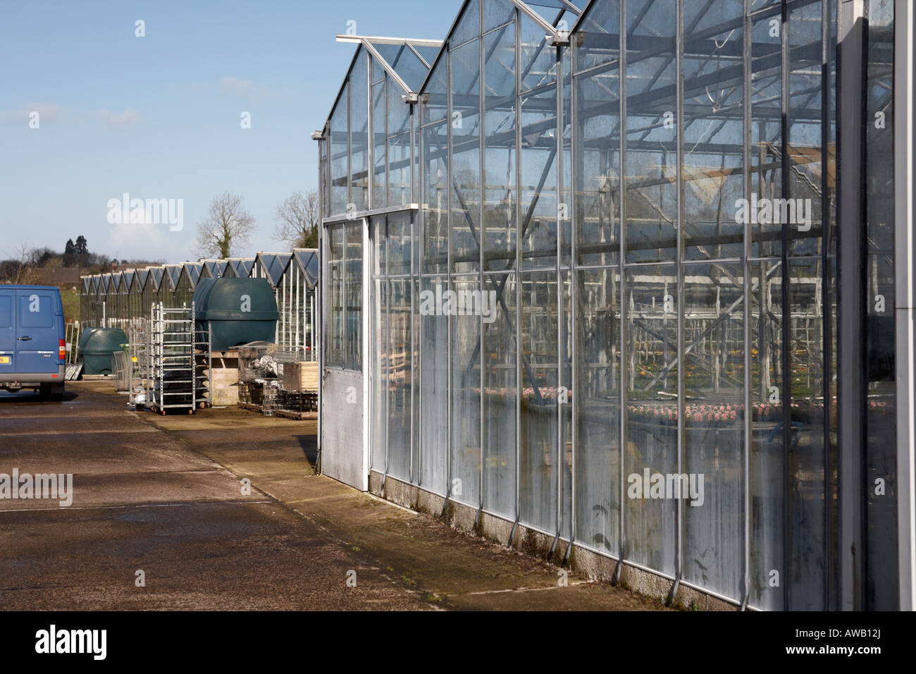 glass greenhouses in industrial scale at hoop hill nurseries county Armagh Northern Ireland - Stock Image