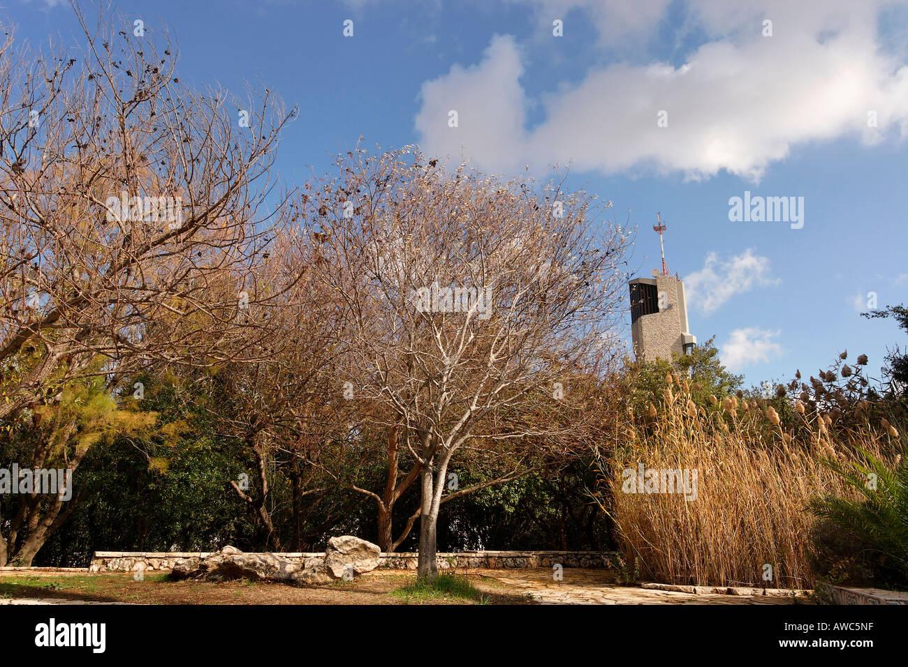 Israel Jerusalem The Hebrew University campus on Mount Scopus the botanical garden - Stock Image