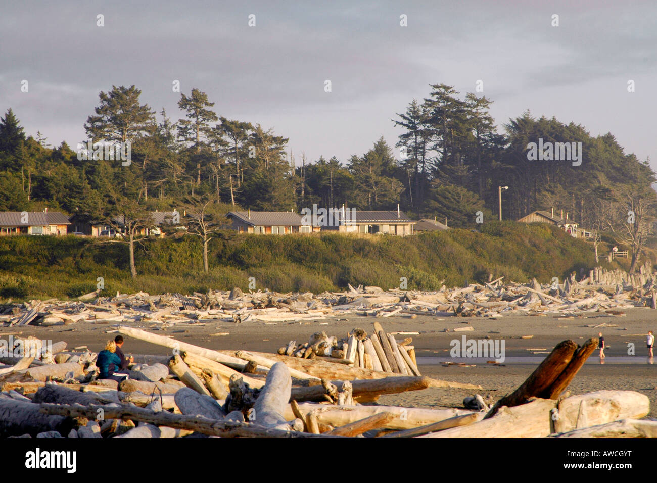 Kalaloch Beach And Lodge Cabins Olympic National Park