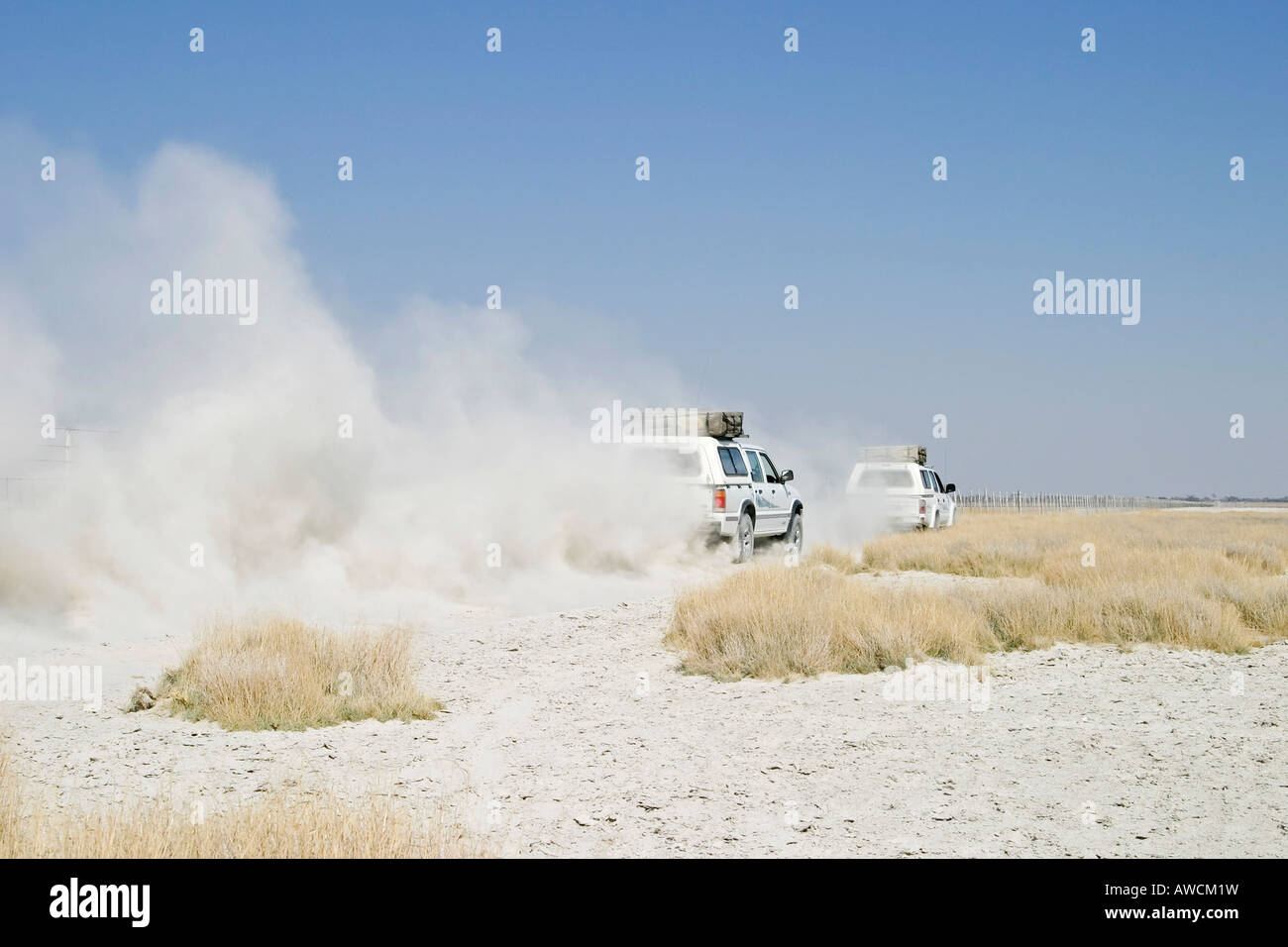 Offroad tour over a big salt pan, Sowa Pan, Makgadikgadi pans, Botswana, Africa Stock Photo