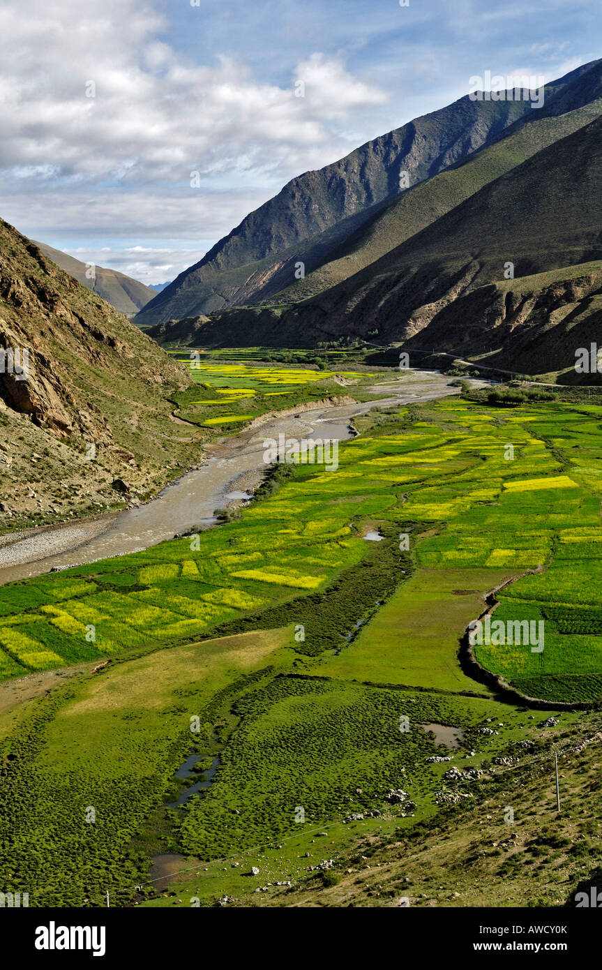 View of river and fertile valley between Gyantse and Dangxiong, Tibet - Stock Image