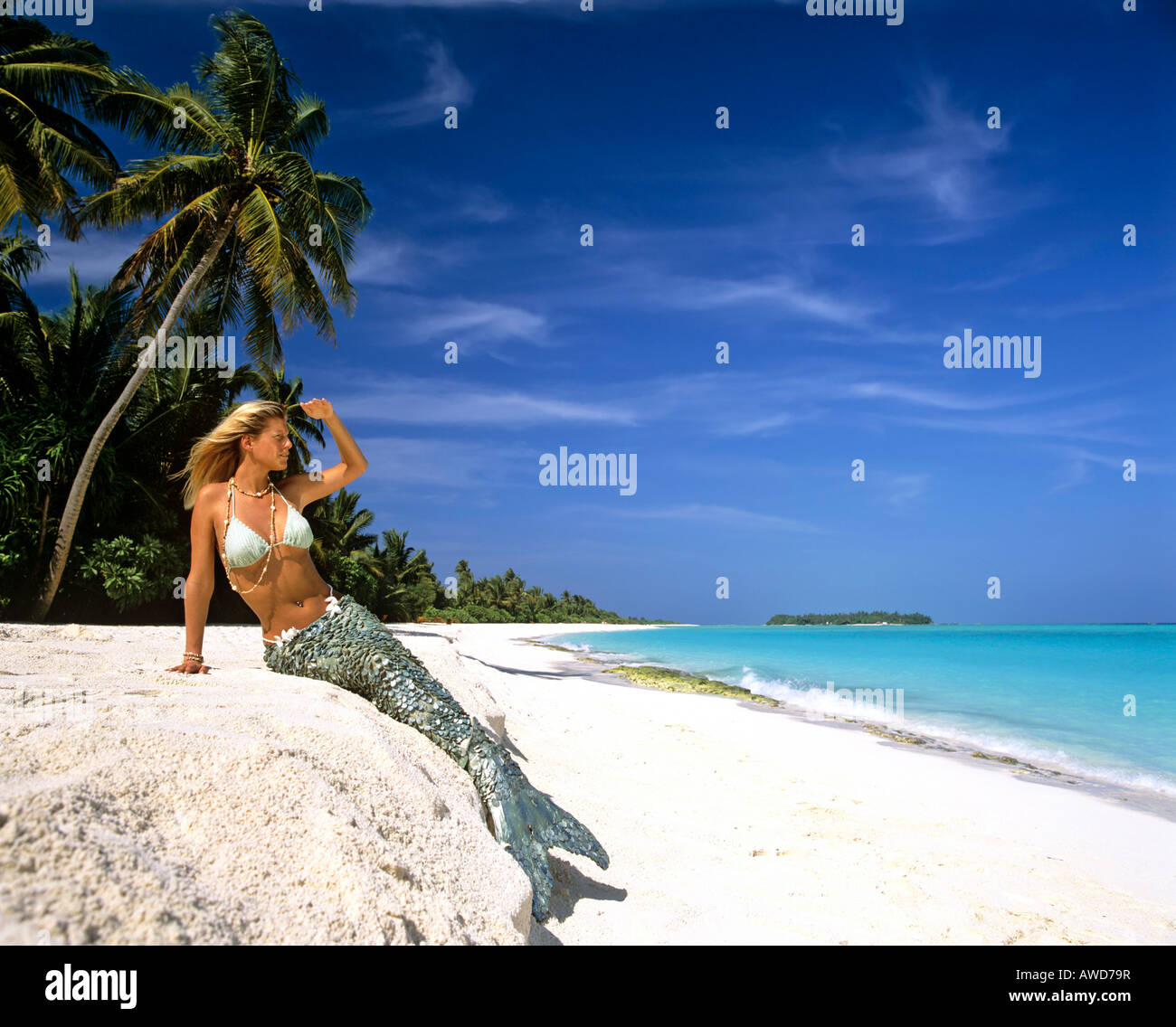 Indian Beach: Mermaid On The Beach, Palm Trees, Maldives, Indian Ocean