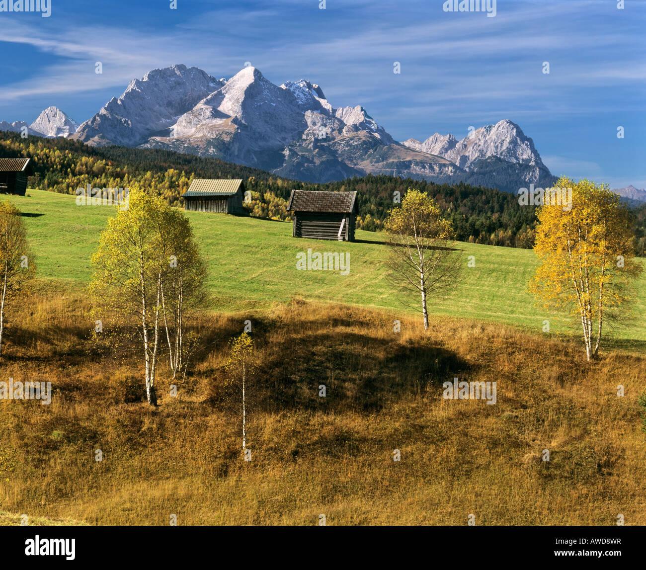 Grassland in autumn, Wetterstein Range, Mittenwald Forest, Upper Bavaria, Bavaria, Germany, Europe Stock Photo