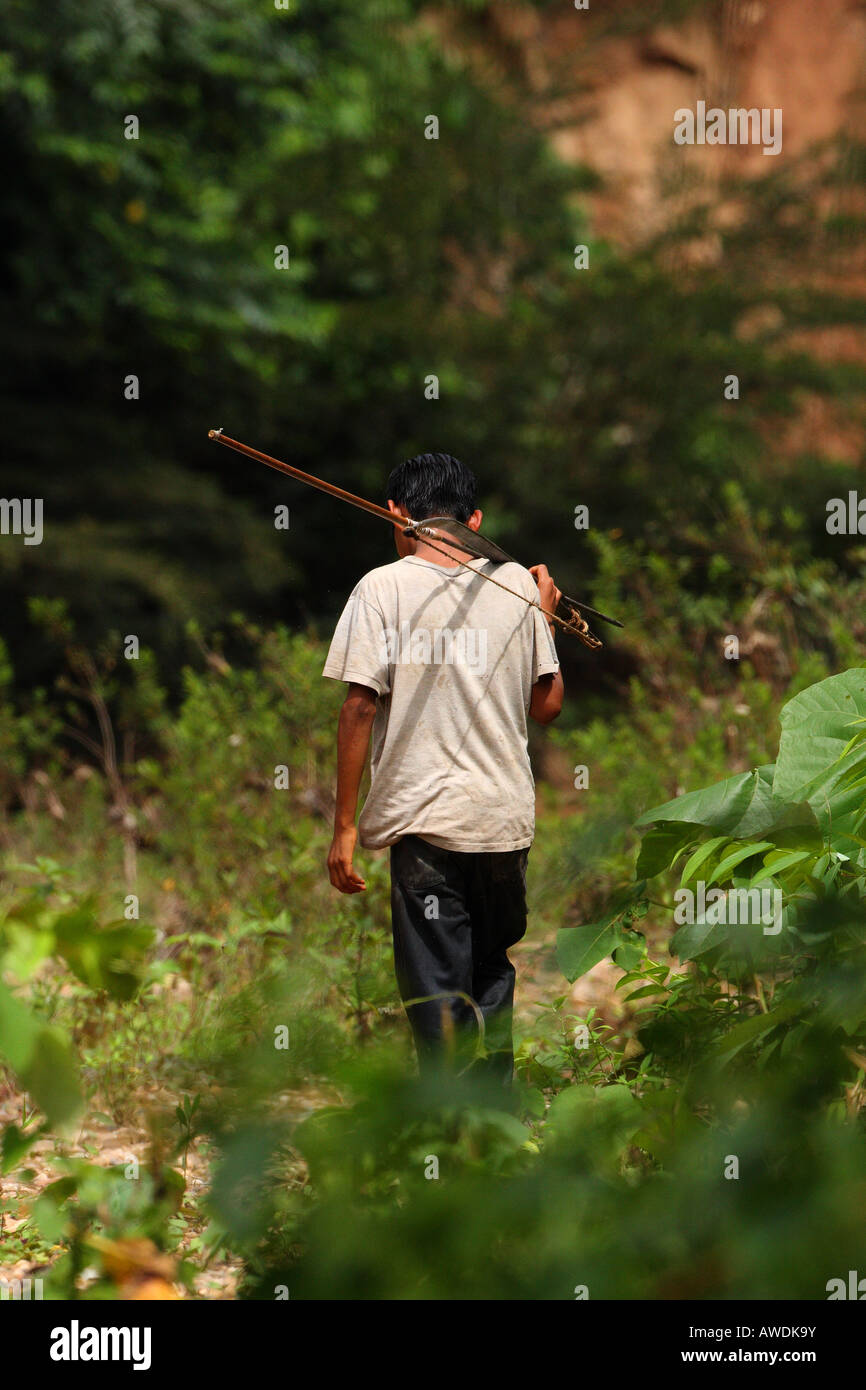 An indigenous Amazonian boy carries his bow and arrow through the rain forest in Pilon Lajas Reserve near Madidi, - Stock Image