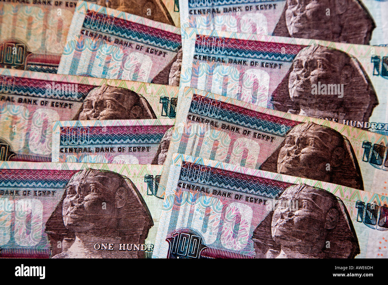 egyptian currency stock photos amp egyptian currency stock