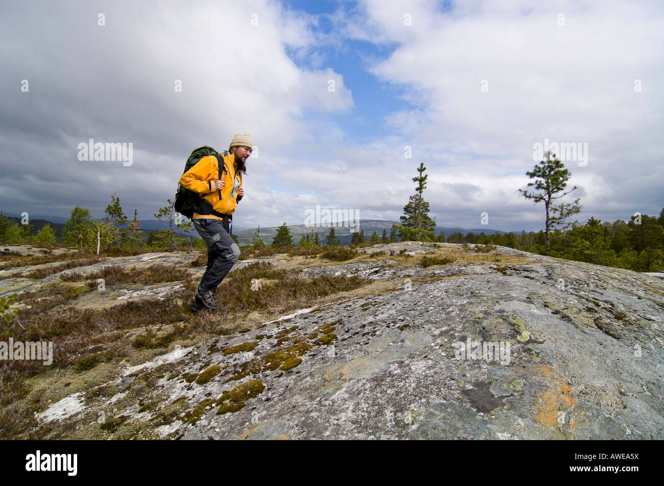 Hiker, Fjell, Jotunheimen National Park ('Home of the Giants Nat'l Park), Norway, Scandinavia, Europe - Stock Image