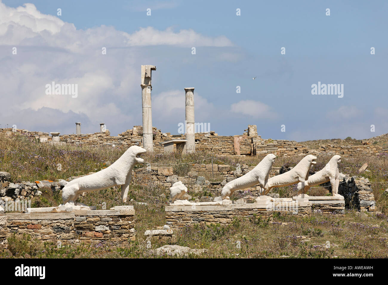 Archaic statues of lions, Delos, Greece - Stock Image