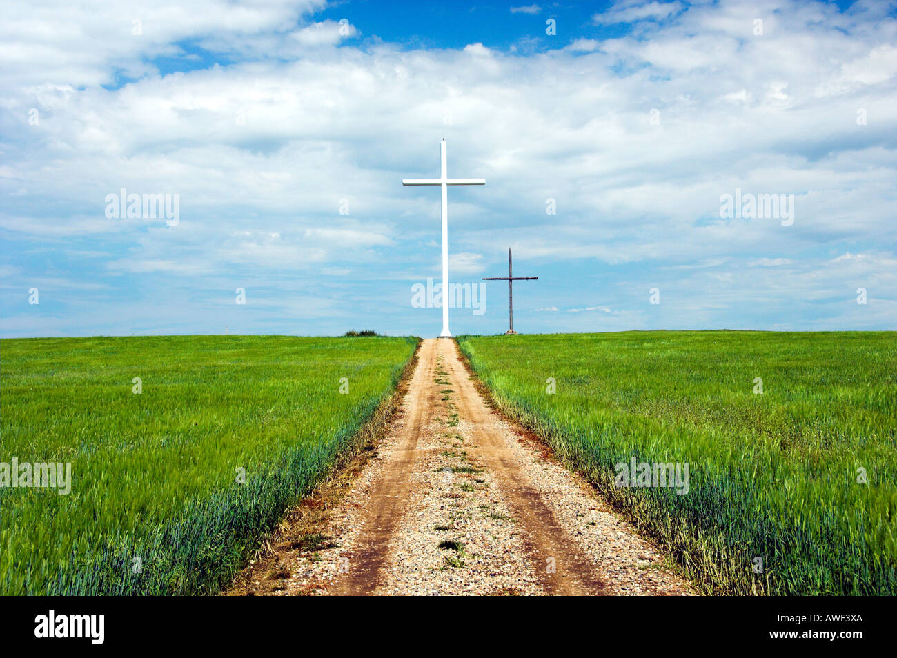 A roadway leading to large crosses near Smuts Saskatchewan Canada commemorate abortion victims - Stock Image