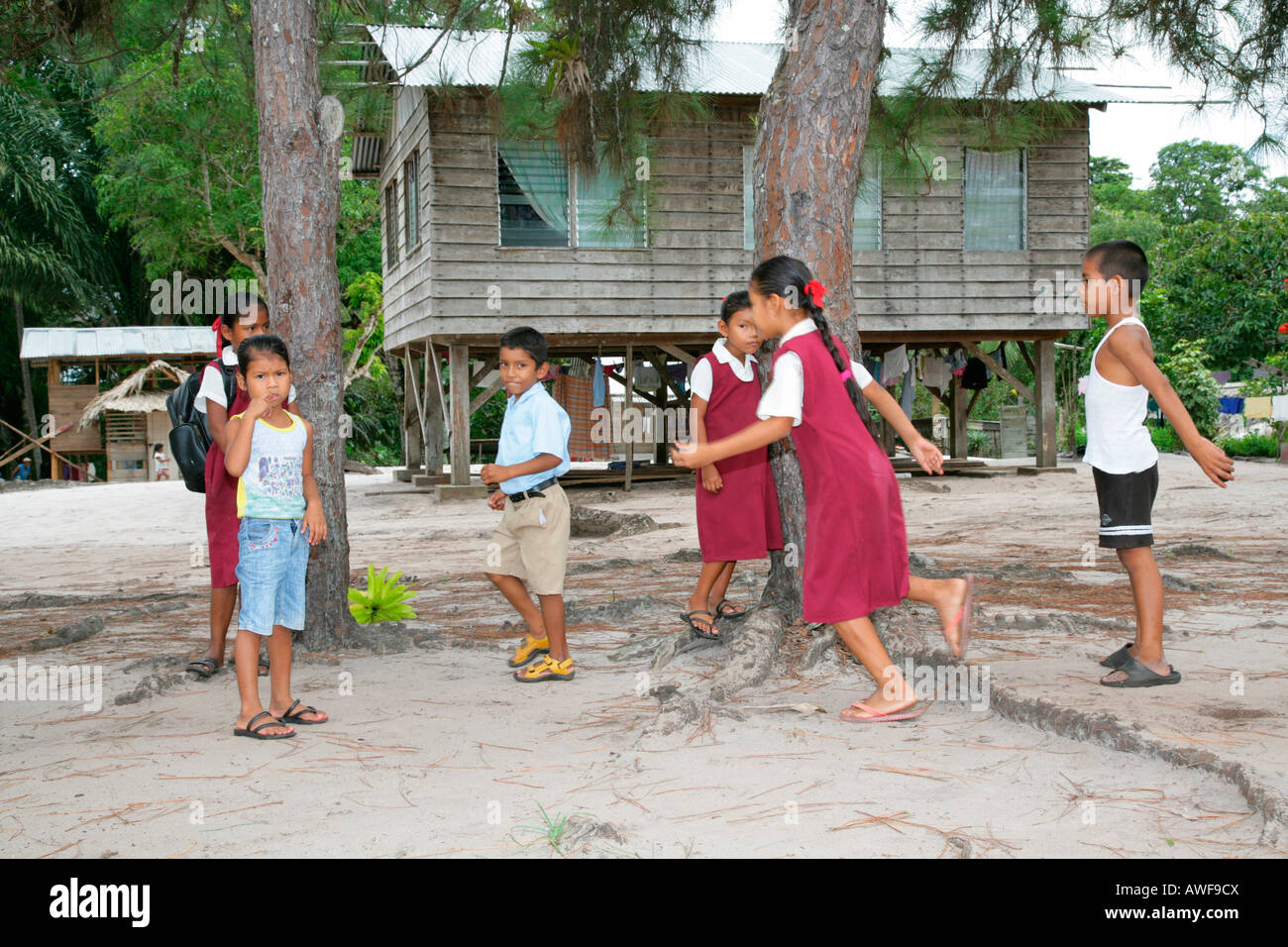 Native day in Suriname(Indians)   Indian arowak Suriname ...   Arawak Indians Suriname South America