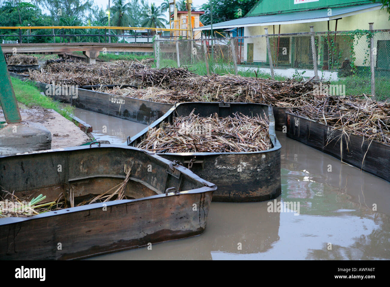 Barges used for the transportation of sugar cane, Demerara Province, Guyana, South America - Stock Image