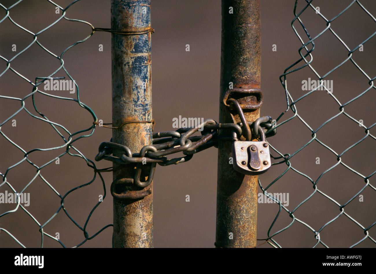 Chain link gate with chain and padlock, North Rhine-Westphalia, Germany, Europe - Stock Image