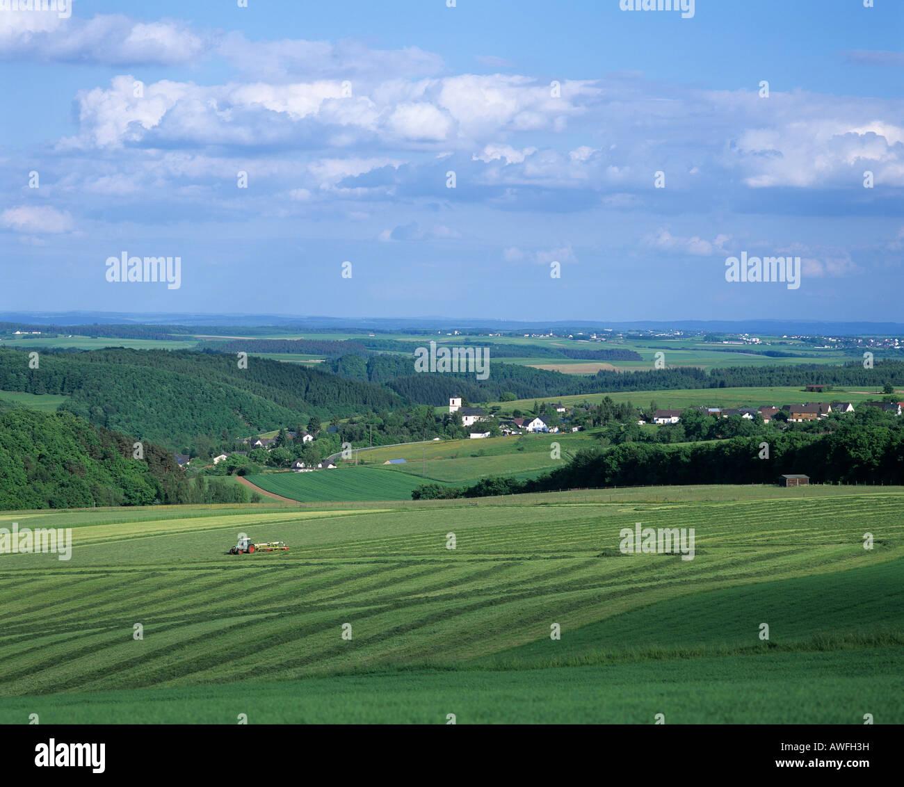 Rural landscape, Eifel region, Germany, Europe Stock Photo