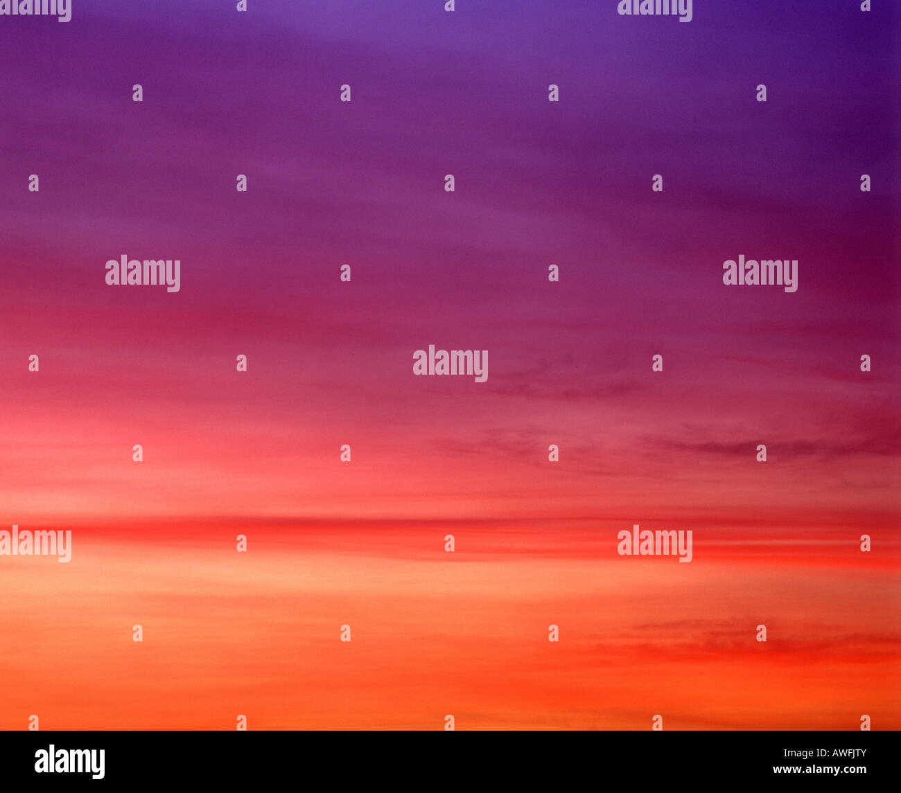 Glowing night sky, mauve and fuschia - Stock Image
