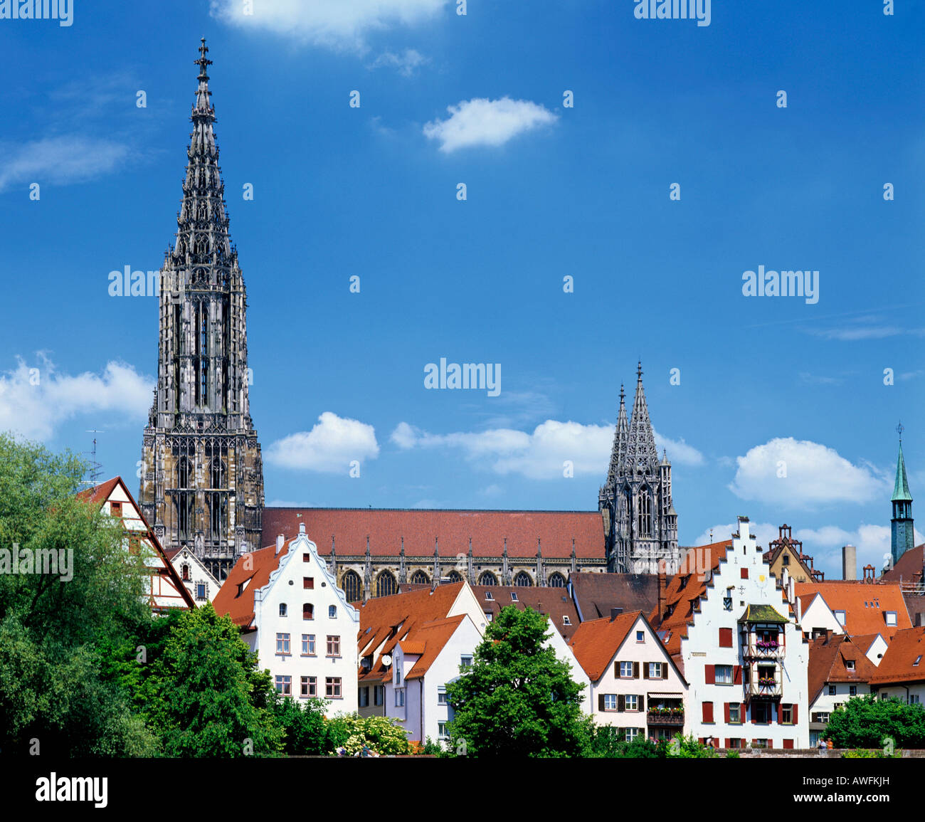 Ulm's Gothic cathedral (Ulmer Muenster), which at 161, 5 m or 530 ft features the world's tallest church spire, Ulm, Baden-Wuer Stock Photo