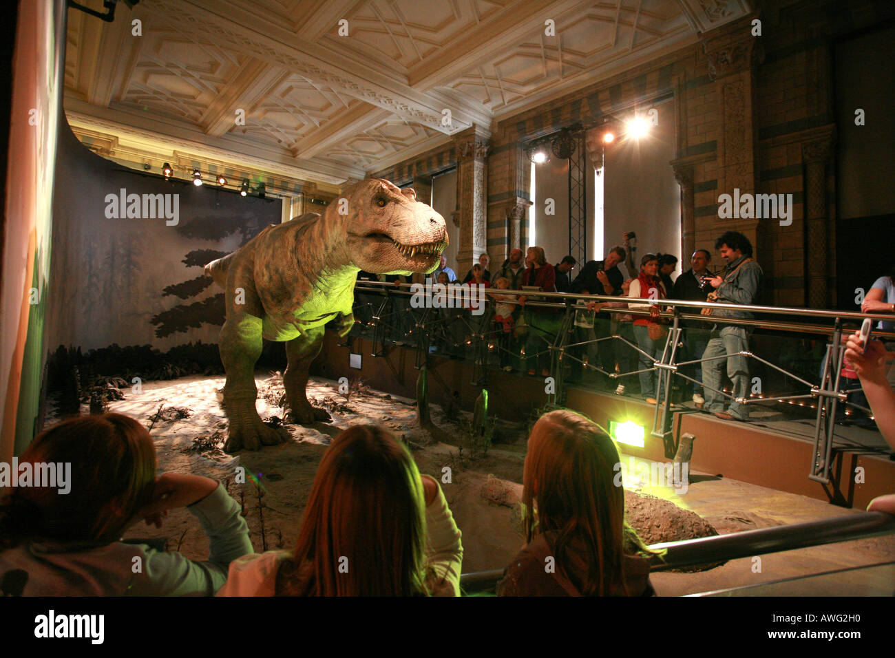 Tourists visit the popular Tyrannosaurus Rex T Rex dinosaur exhibition at the world famous Natural History Museum London England - Stock Image