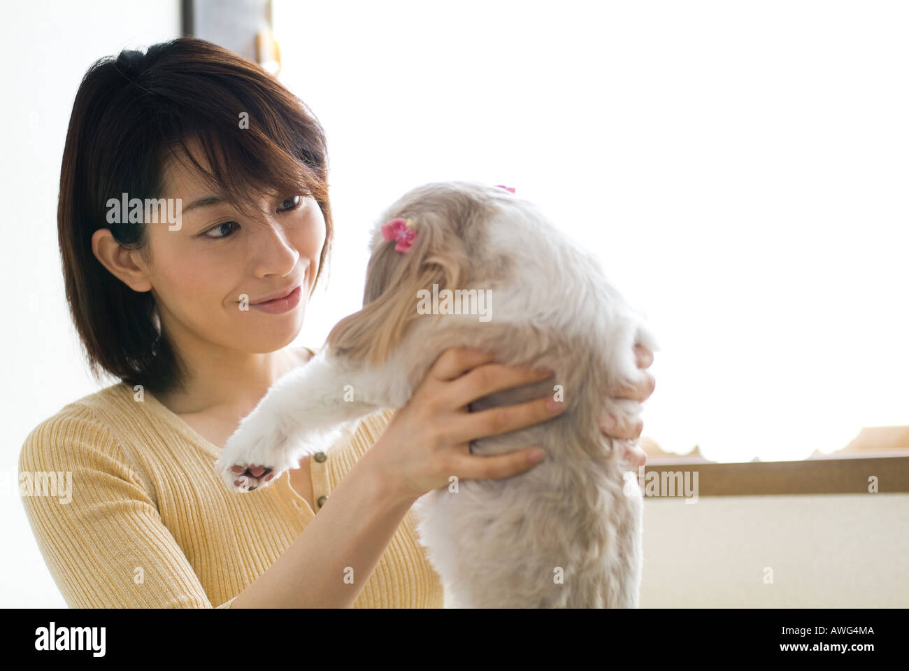 A mid adult woman lifting a dog - Stock Image