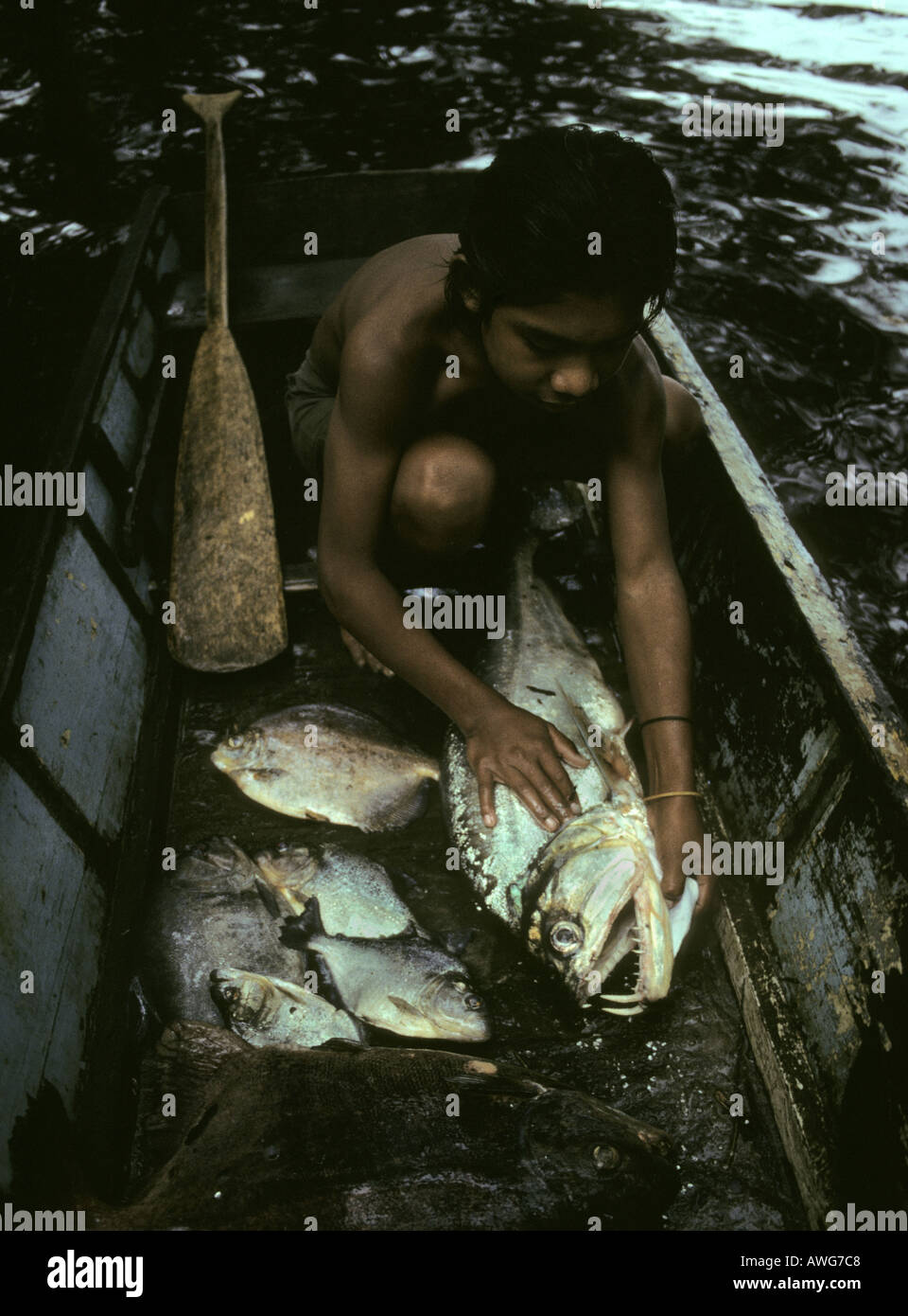 Amerindian boy with fish catch Mazaruni River Guyana - Stock Image