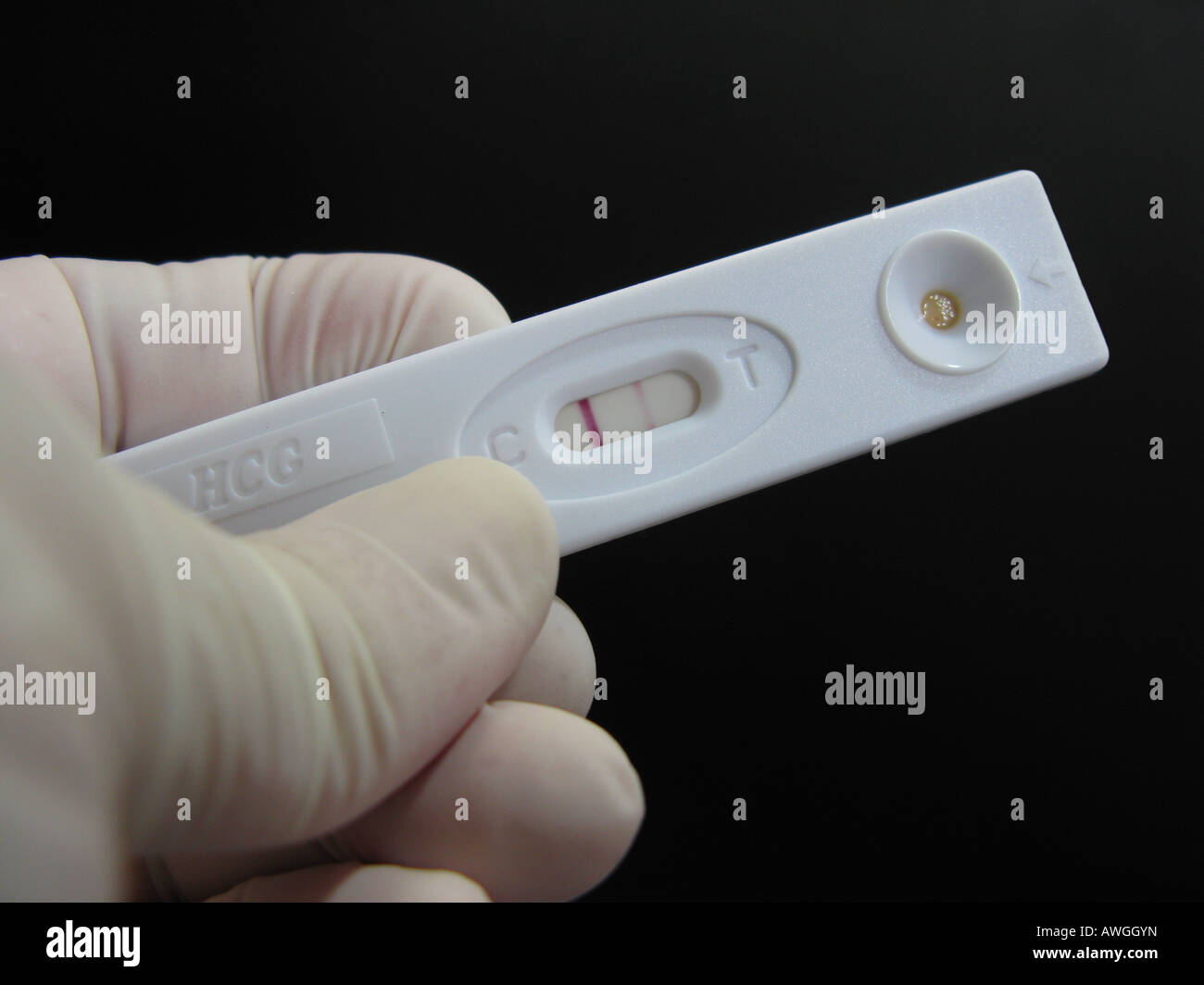 Pregnancy Test Showing Positive Resultresultado Positivo Stock