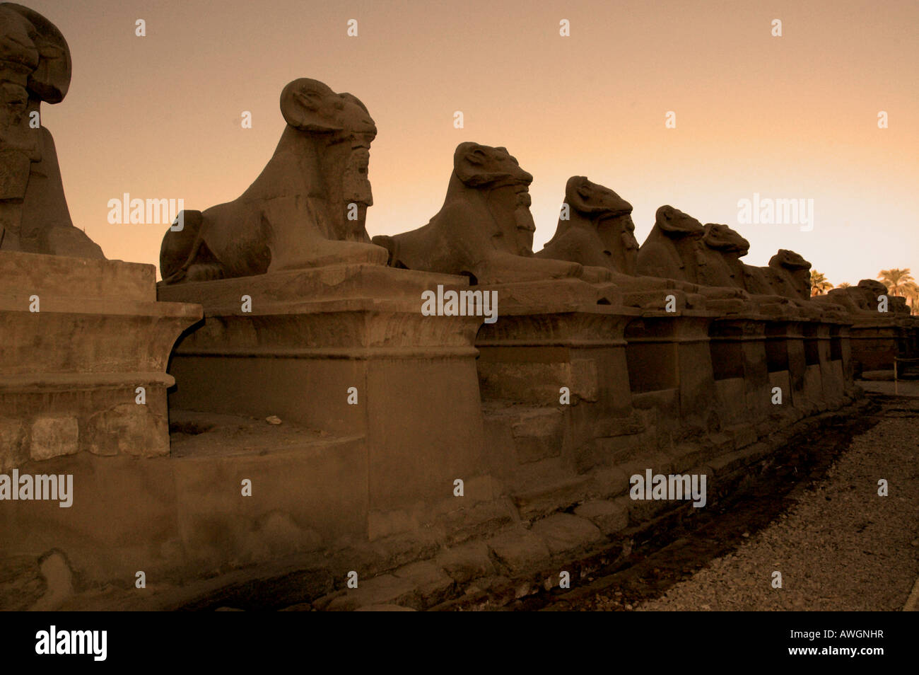 Avenue of the Sphinxes, Temple of Karnac, Luxor, Egypt - Stock Image