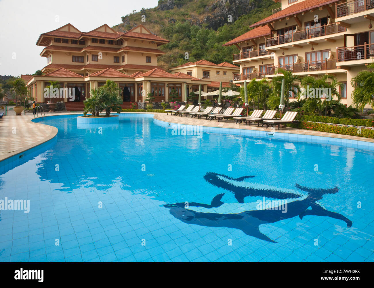 The dolphin tiled swimming pool at the SUNRISE RESORT on CAT ...