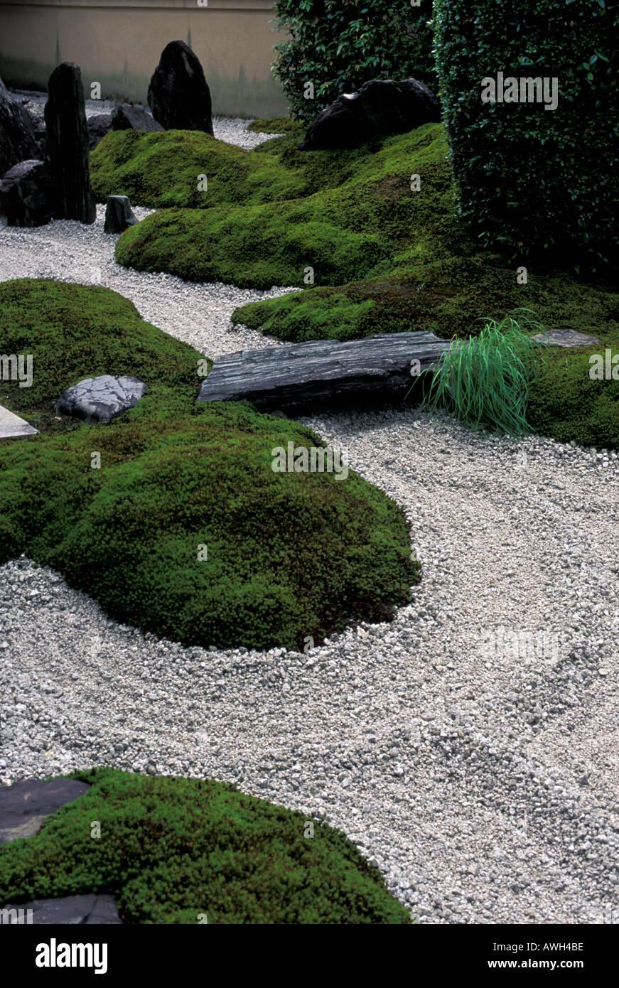 Detail of Zuiho in Zen garden Kyoto Japan - Stock Image