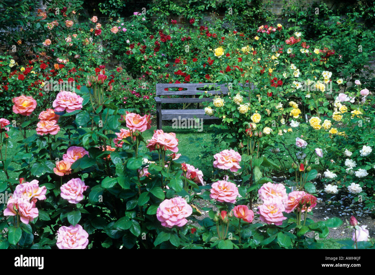 Rose Garden bench seating Mannington Hall garden Norfolk Stock Photo