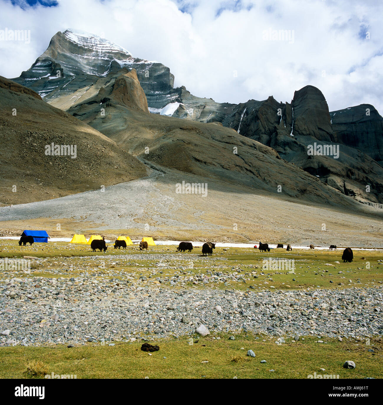 West face Of Mount Kailash With Yaks and Tents  Western Tibet Asia - Stock Image