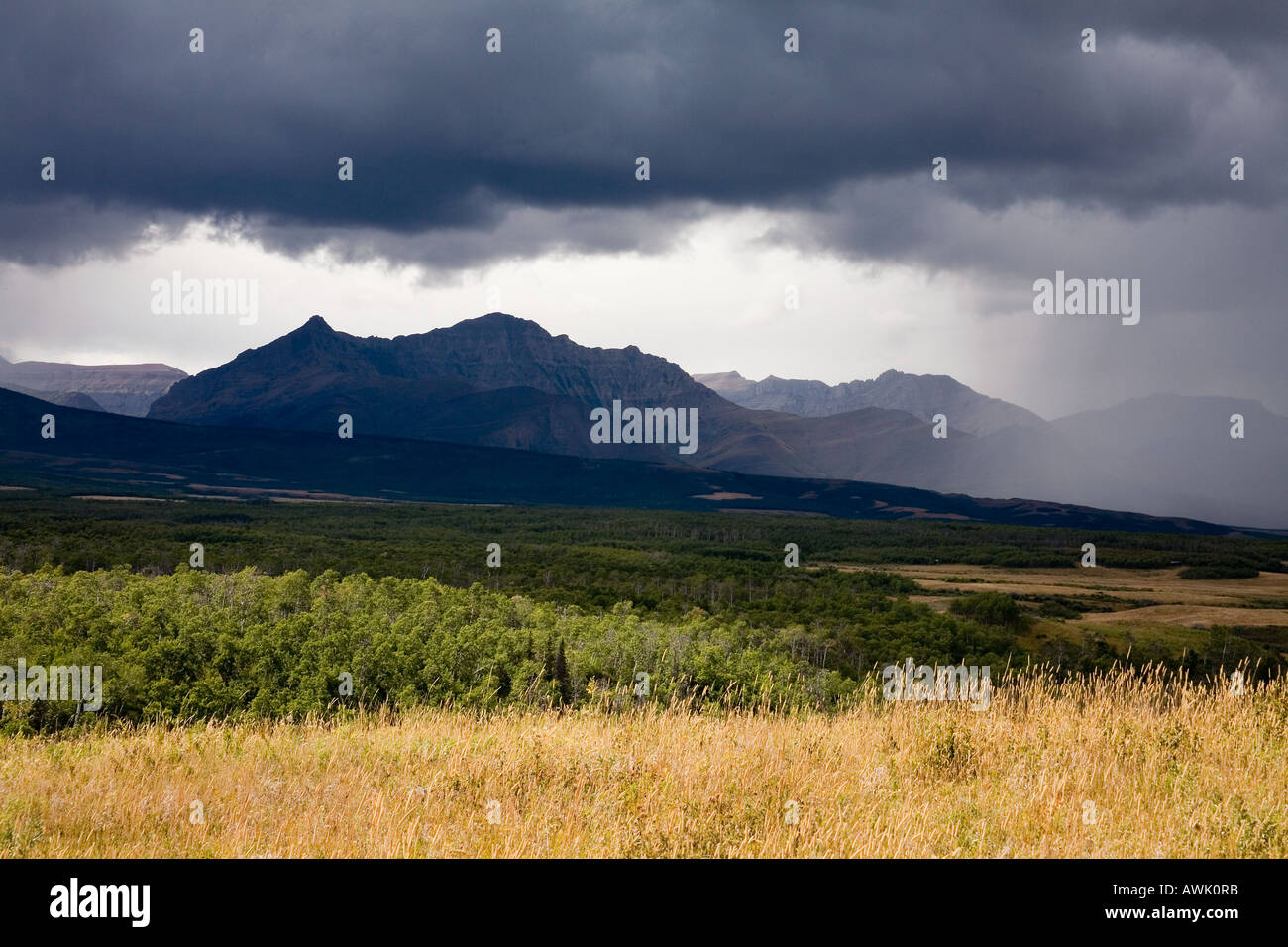 Rain storm over Spread Eagle mountain in Canadian Rockies  Alberta Canada - Stock Image