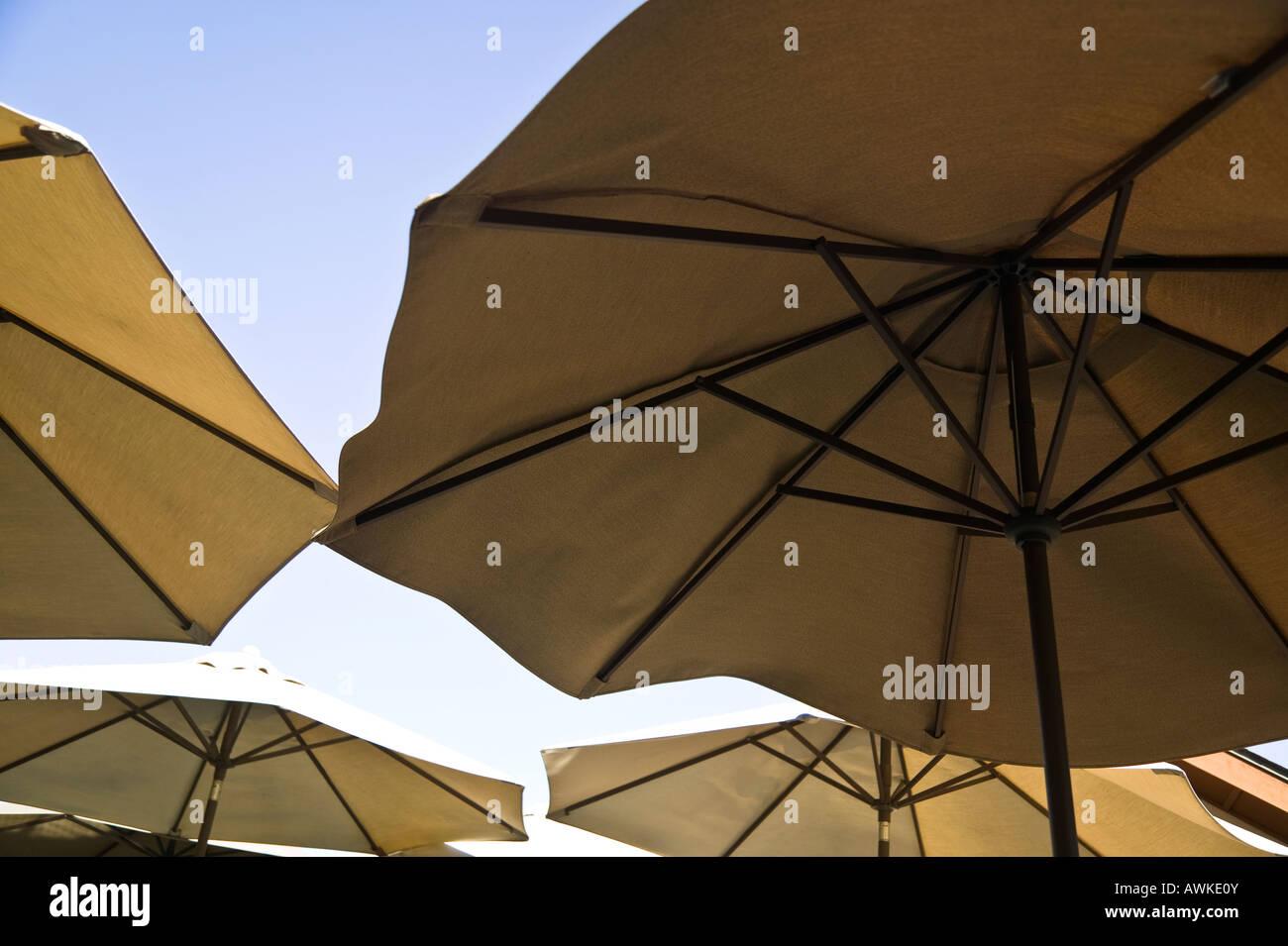 Ordinaire Patio Umbrellas Balboa Park, San Diego, California, USA ...