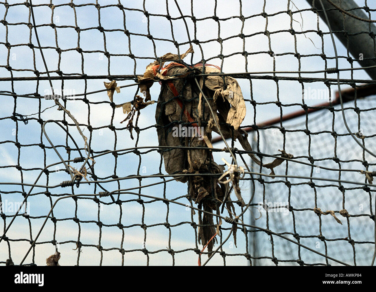 Trash tangled in wire fence Stock Photo