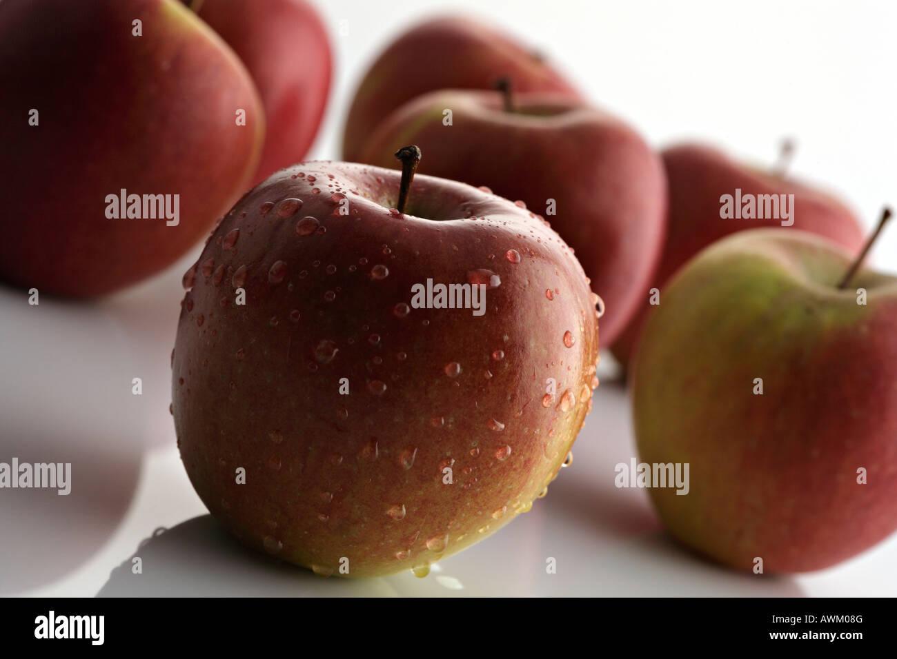 Several Braeburn apples Stock Photo