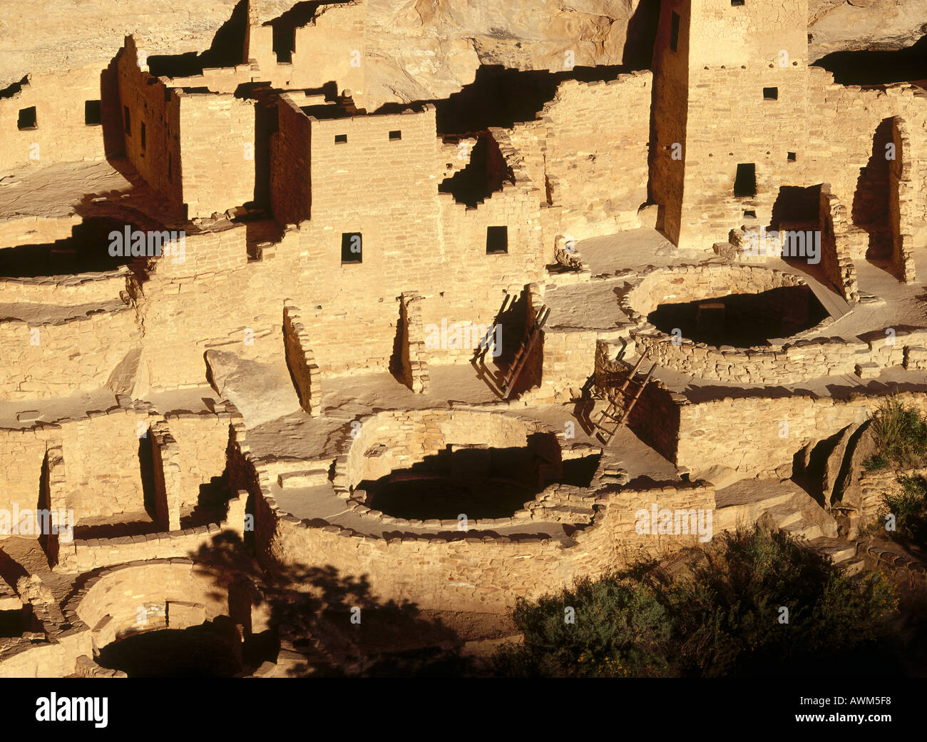 Ruins of historical adobe buildings, Anasazi Ruins, Mesa Verde National Park, Colorado, USA - Stock Image