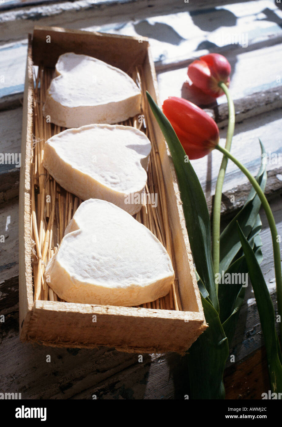 Three neufchatel cheeses in form of hearts, in wooden box with tulips - Stock Image